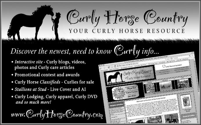 Curly Horse Country