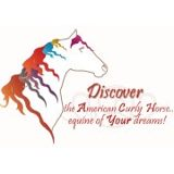 article: Discover the American Curly Horse, equine of your dreams!