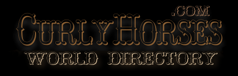 Curly Horse breeder directory